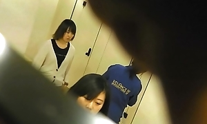 hidden toilet hd 6