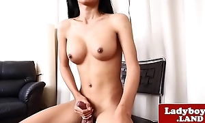 Authoritative ladyboy tugging and stroking her cock