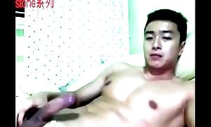 Webcam ST 58