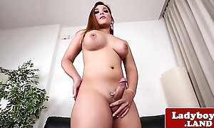 Curvy ladyboy shows her ass and jerks off